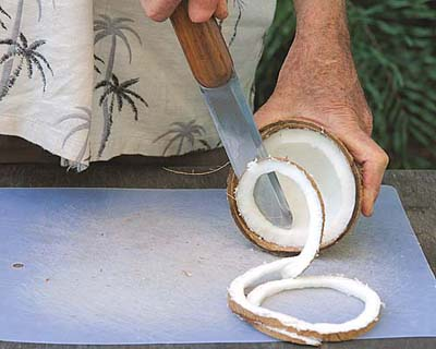 Universal Coconut Knife